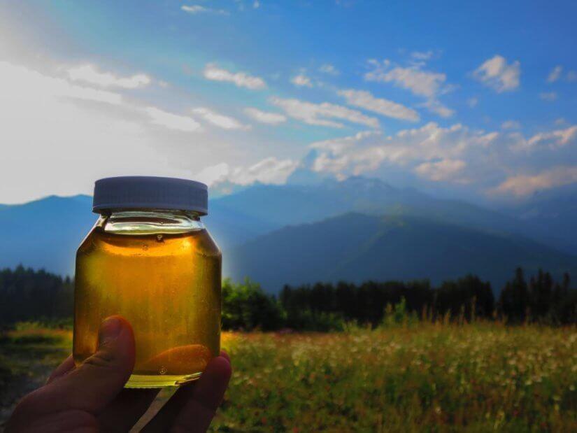Сорта мёда и его виды